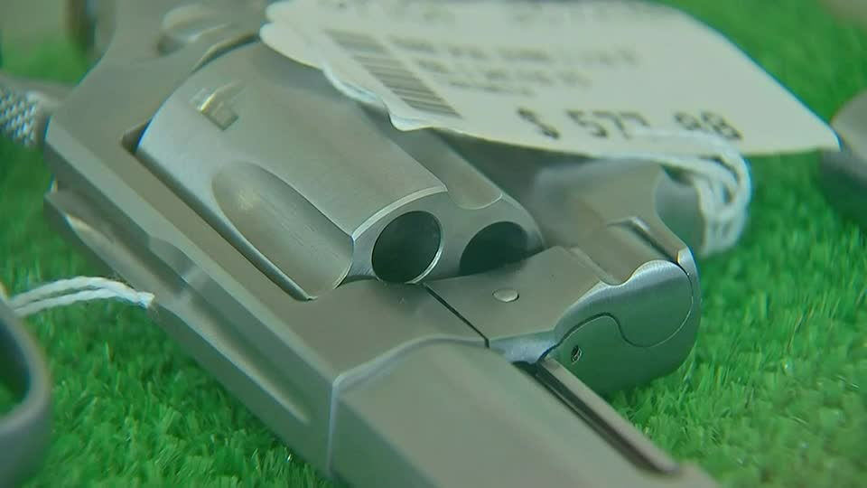 "Washington County joins list of ""Second Amendment sanctuaries"" in Pa."