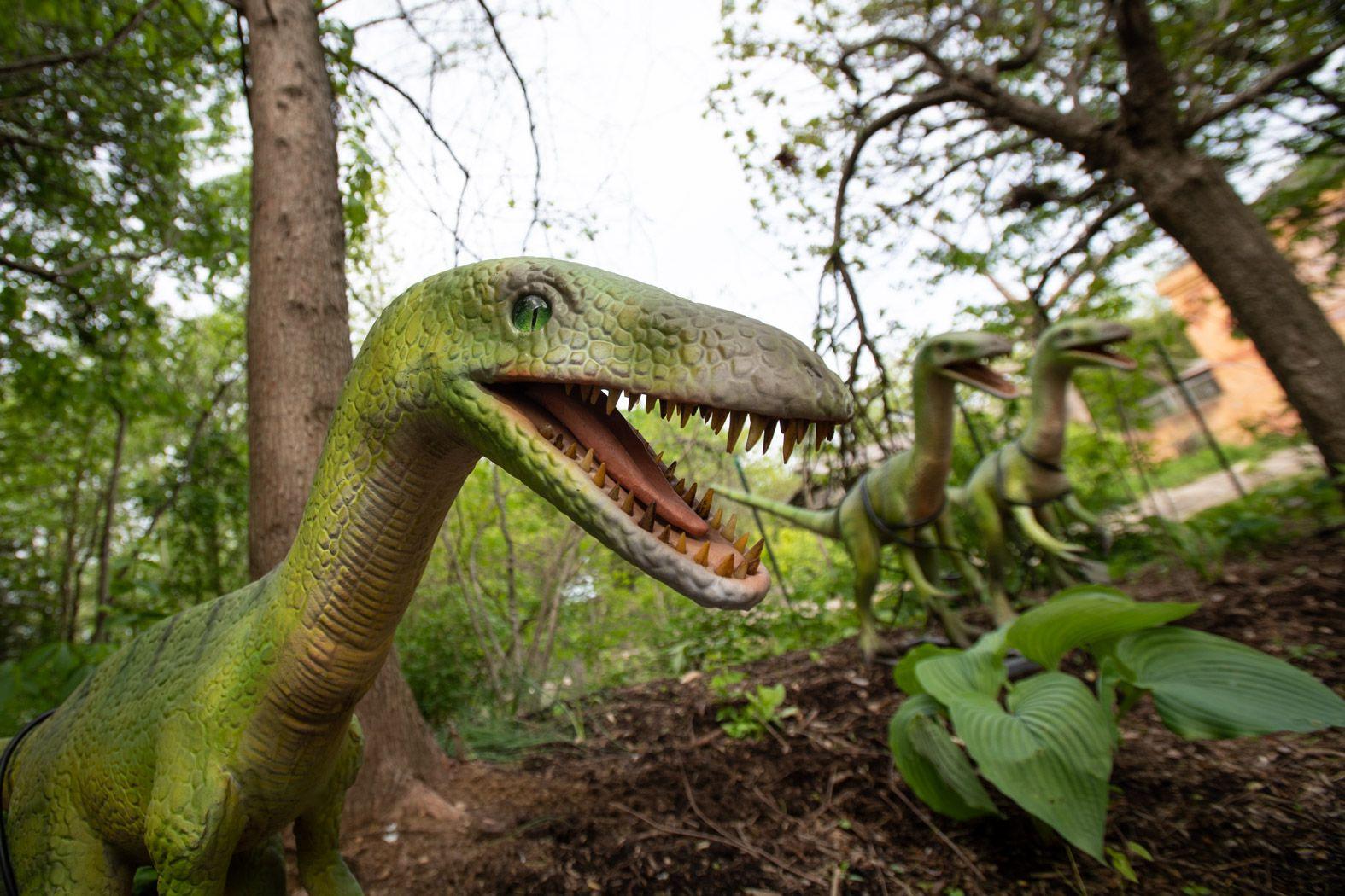 Dinosaur Island to return to Columbus Zoo this Memorial Day weekend