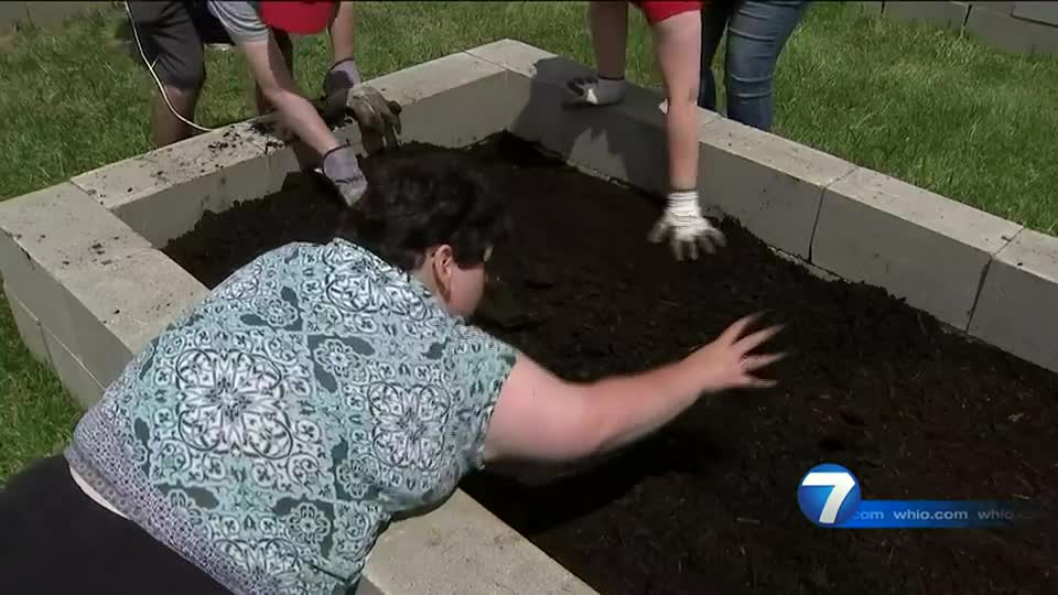 Local food bank works to build community garden for fresh vegetables